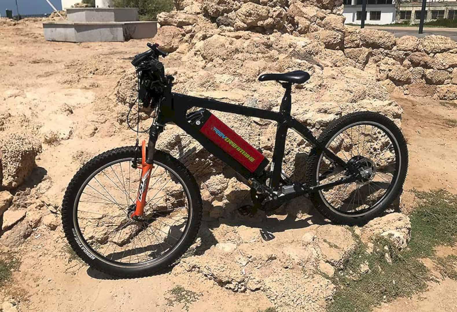 Avial E Bike 1