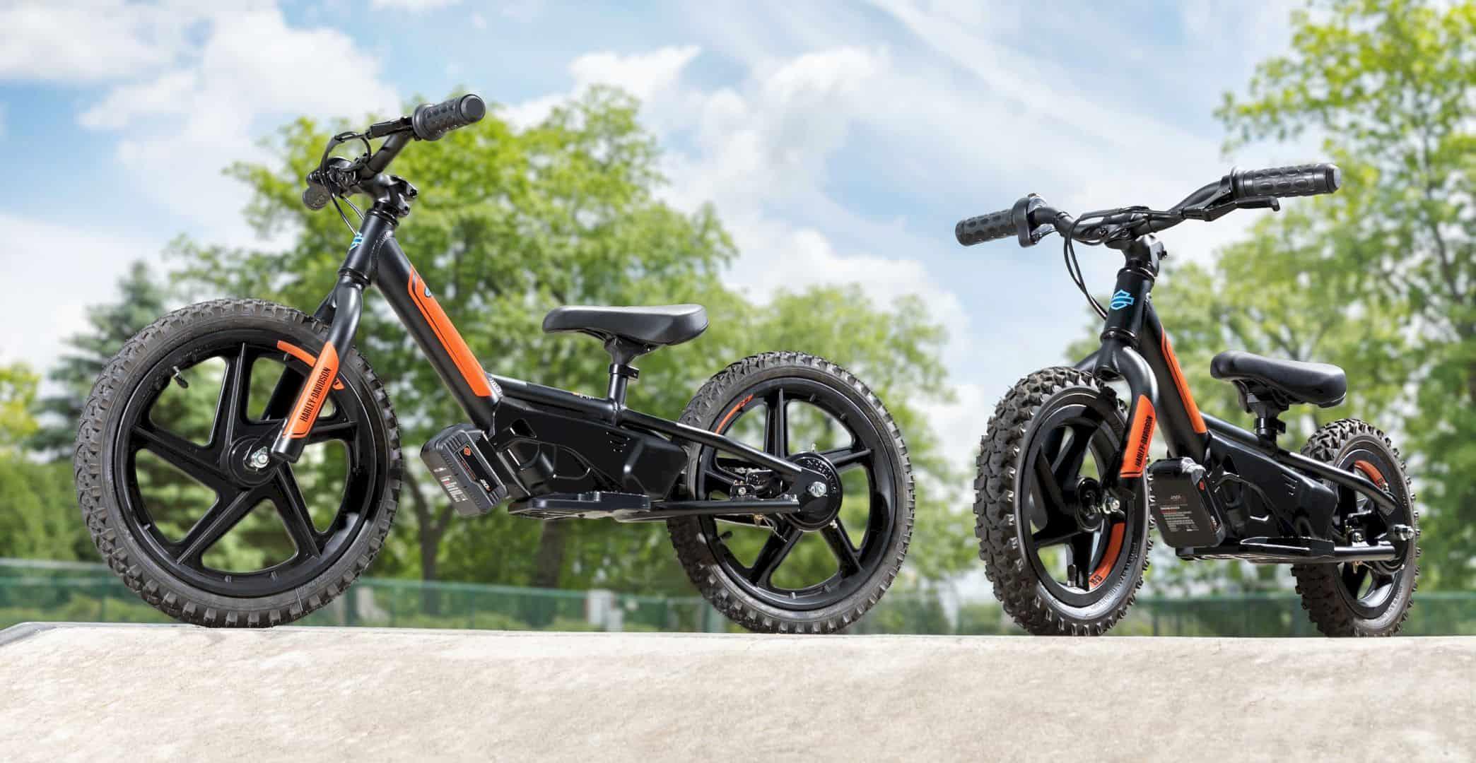 Electric Balance Bikes Harley Davidson USA 1
